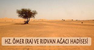 Hz. Ömer (ra) ve Rıdvan Ağacı hadisesi