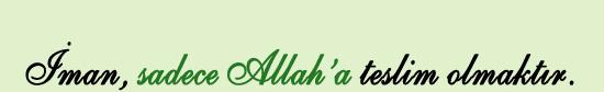 imanilmihali.com